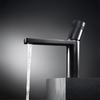 Single Handle Basin Faucet in Chrome